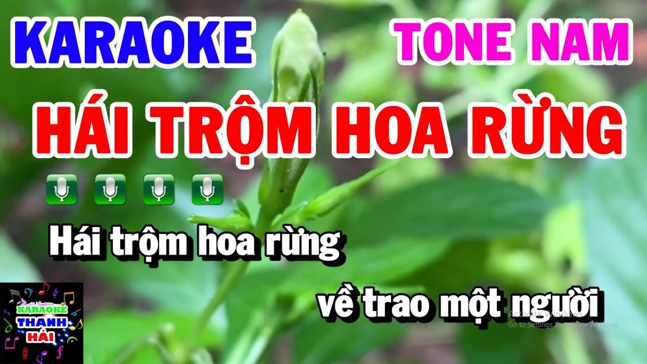 Karaoke Hái Trộm Hoa Rừng | Nhạc Sống Tone Nam Em | Nhạc Sống Trữ Tình Thanh Hải