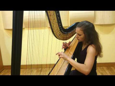 C. Debussy: Clair de Lune (Lara Hrastnik)