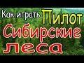 Как играть Пилот Сибирские леса урок аккорды бой mp3