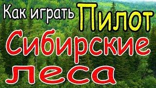 Как играть Пилот - Сибирские леса - урок - аккорды - бой