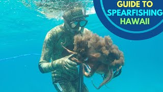 SPEARFISHING HAWAII BASICS: What's The Best Diving Conditions?