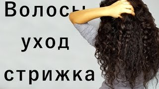 видео Уход за кудрявыми волосами в домашних условиях