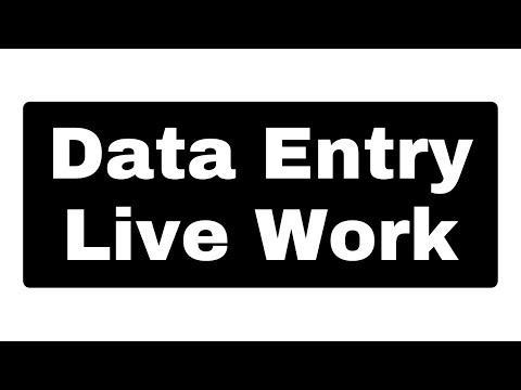 Data Entry Work Demo For BEGINNERS | Make Money Online