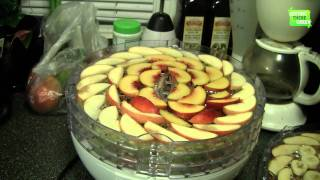 Dehydrating Fruit in Our Dehyrator (Great Yard Sale Bargain)