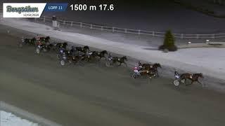 Vidéo de la course PMU PRIX MAGNIFICENT RODNEY