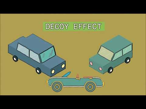 Brain Cognitive Biases Series: The Decoy Effect
