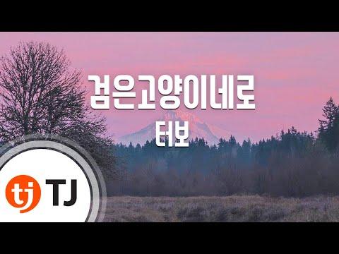 Black Cat 검은고양이네로_Turbo 터보_TJ노래방 (Karaoke/lyrics/romanization/KOREAN)