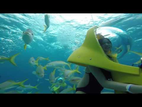 Things to do in Nassau Bahamas! Gopro Hero 5