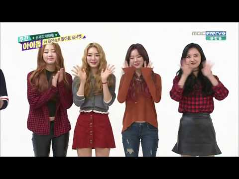 Dal Shabet In Weekly Idol [CC: ENG SUBS]