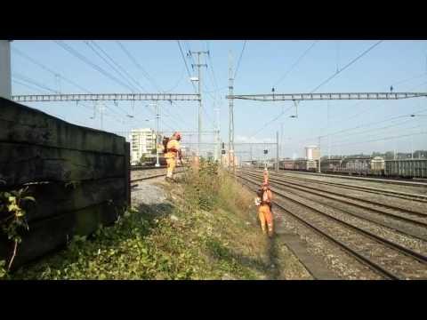 Basel-Muttenz report z prace