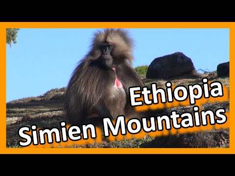 Ethiopia - Simien Mountains