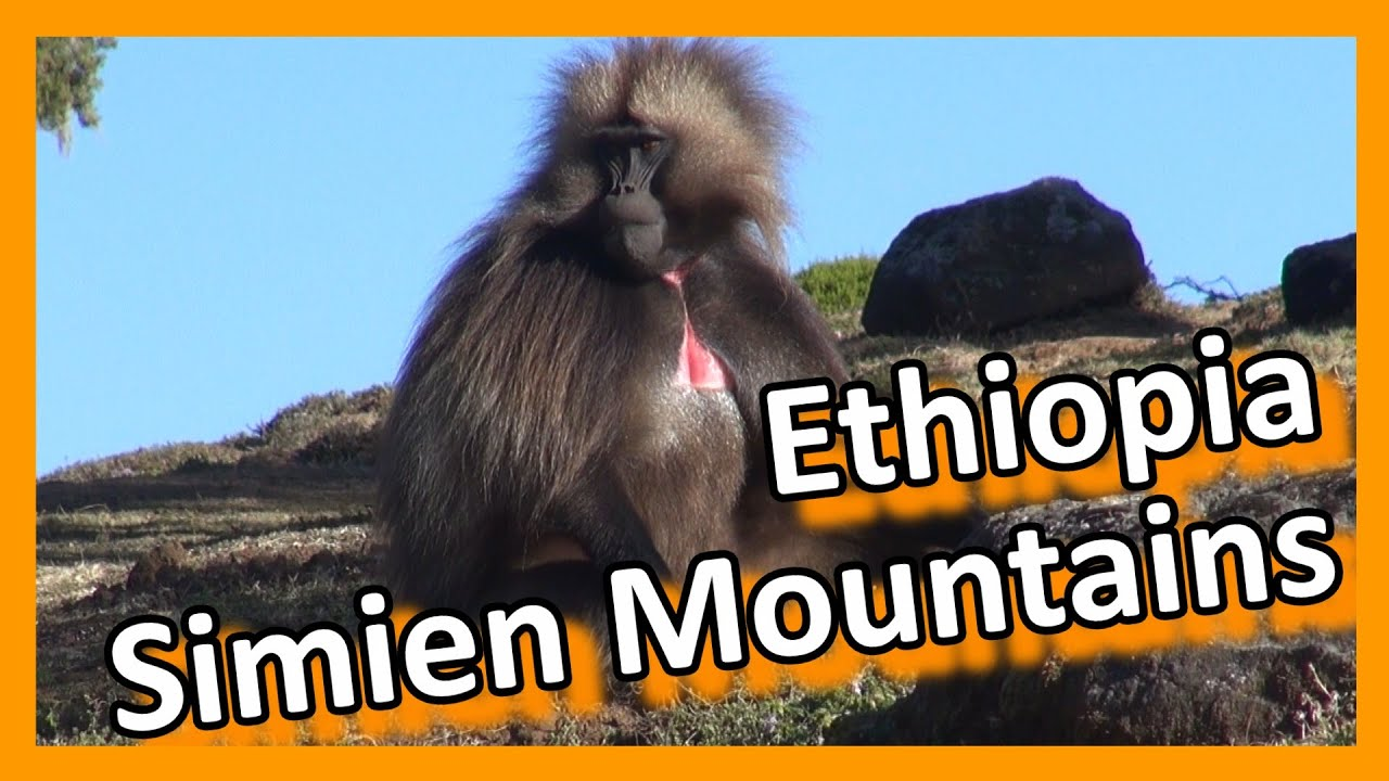 Ethiopia - Simien Mountains - YouTube