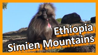 Ethiopia, Simien Mountains And Magnificent Natural Beauty - የሰሜን ተራሮች እና አስደናቂው የተፈጥሮ ውበታቸው