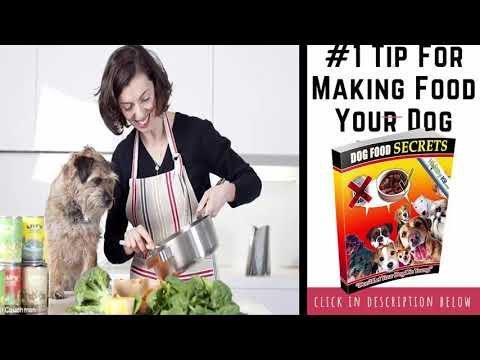3-basic-rules-of-homemade-diet-for-dogs