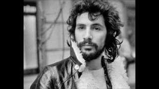 Cat Stevens - Changes IV