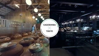 บาร์หรู-โตเกียว×ร้านเหล้าท้องถิ่น-คาโงชิมา