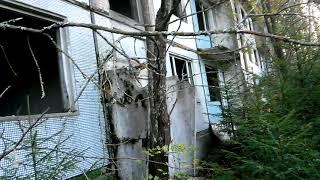 Загадочный объект в Брянском лесу