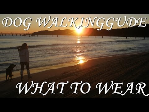 Dog Walking Guide: What To Wear