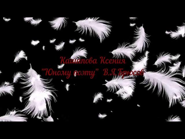 Изображение предпросмотра прочтения – КсенияКашапова читает произведение «Юному поэту (Юноша бледный со взором горящим…)» В.Я.Брюсова