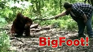 BIGFOOT Caught on Camera! - Found Footage - The Facility Video Archives