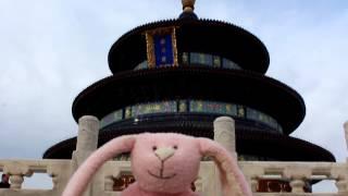 粉紅小兔逛中國遊北京天壇第三站(明清天子專用的祭壇)bunny in Temple of Heaven
