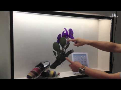 Transparent Display for Running 3D Education Conent