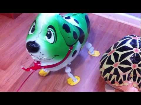 Toys : Walking Balloon Pet aka Pet Balloons