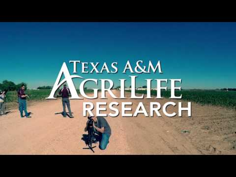 Texas A&M AgriLife Research Unmanned Aerial Systems Project for Agriculture