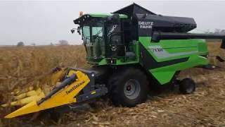Deutz-Fahr C5305 pokaz pracy w kukurydzy - październik 2018