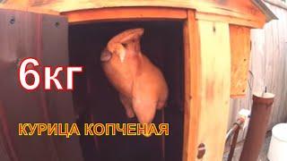Курица варено-копченая /Три этапа /Сушка Жарка Варка /Деревенская жизнь Зауральского подворья