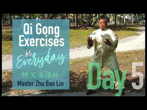 Day5 Zhu Bao Lin