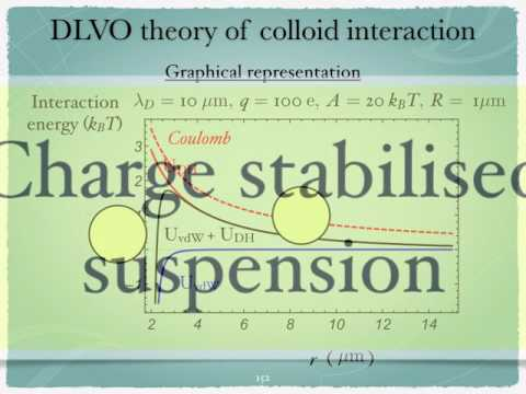 Introduction to the physics of colloids: DLVO theory