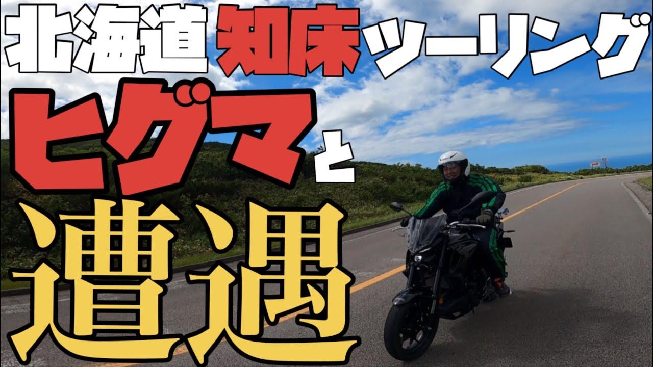 【バイク】知床でヒグマと遭遇!