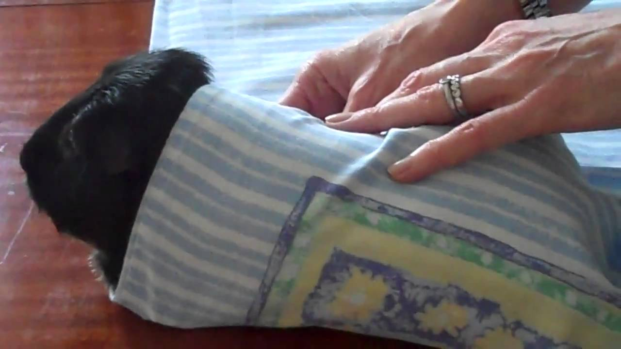 Towel wrapping for a conscious Xray  YouTube