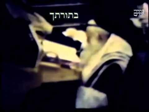 """יקותיאל יהודה הלברשטאם זצ""""ל"""