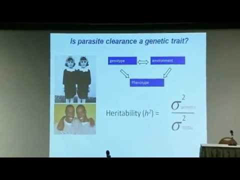 Tim Anderson: Surveillance for Drug-resistance in Malaria: Genetic Characterization......