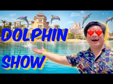 DOLPHIN SHOW at Dubai Atlantis The Palm 2019