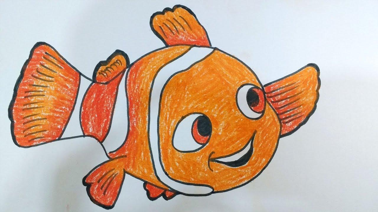 Рыбка немо картинка для срисовки