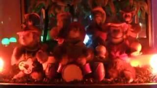 Repeat youtube video Bimbo Box Aapjes In Concert - Music Jukebox - Ape Concert