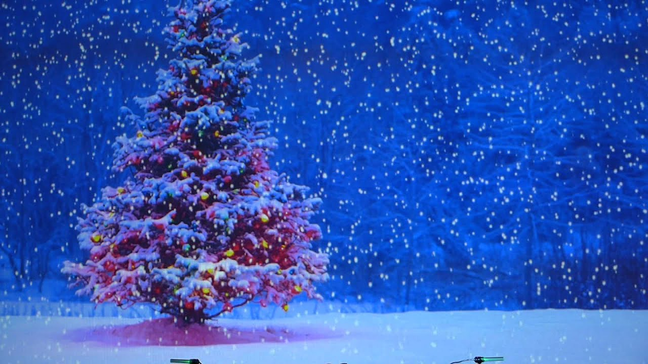 Relaxing Snowfall Christmas Tree and Music - YouTube