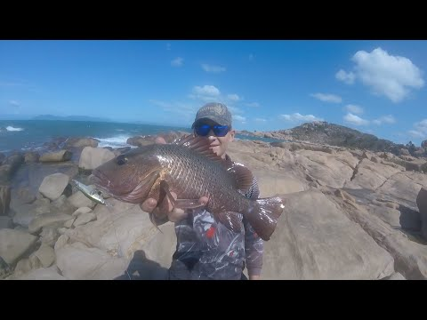1.2m Barramundi Hook Up Off Townsville. Mangrove Jack Fishing Turns Into Non Stop Barra Session.
