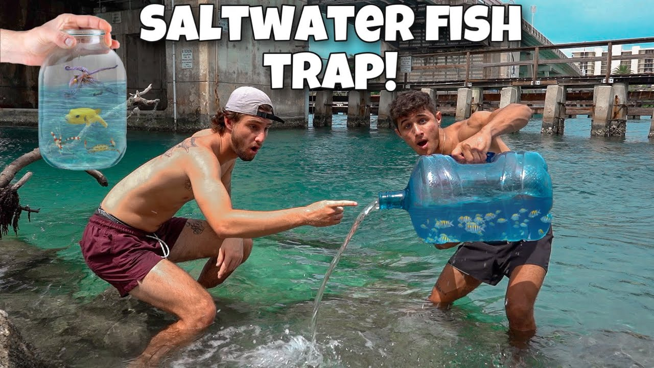 FISH TRAP Catches Exotic FISH and INVERTEBRATES!!