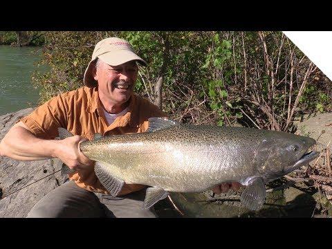 Niagara River Salmon - Shore Fishing With The Stingeye Spinner