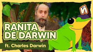 Charles y la ranita de Darwin - Ranita de Darwin ft. Charles Darwin - aÑimales S01E01