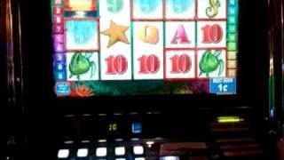 Oceans Wild slot machine bonus win