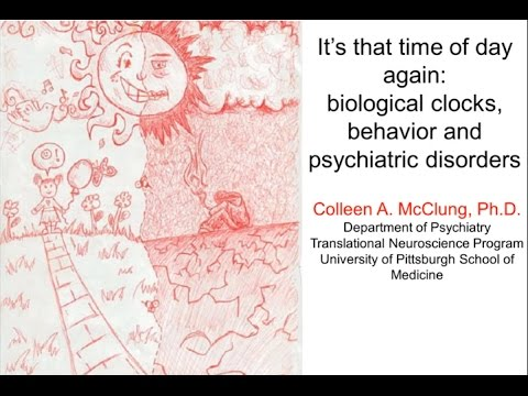 It's That Time of The Day Again: Biological Clocks, Behavior, and Psychiatric Disorders