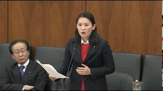 斉藤和子国会質問 添加物の安全性検証を