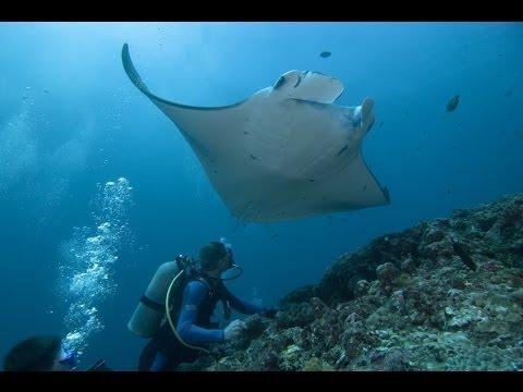 Подводный Мир Пхукет Underwater World Phuket