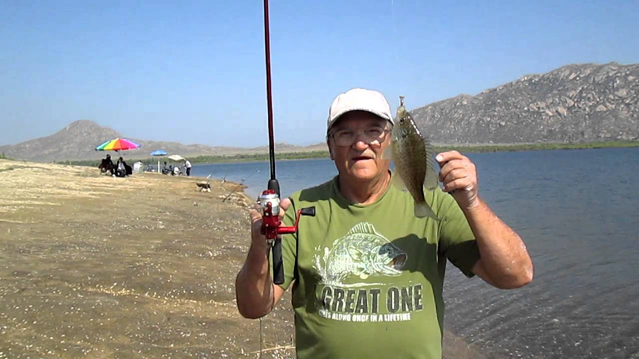 Sam catches redear sunfish at perris lake youtube for Lake perris fishing report