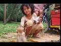 Beautiful girl Sophea feed for poor baby monkey Solita, cute girl meeting baby monkey, baby monkey